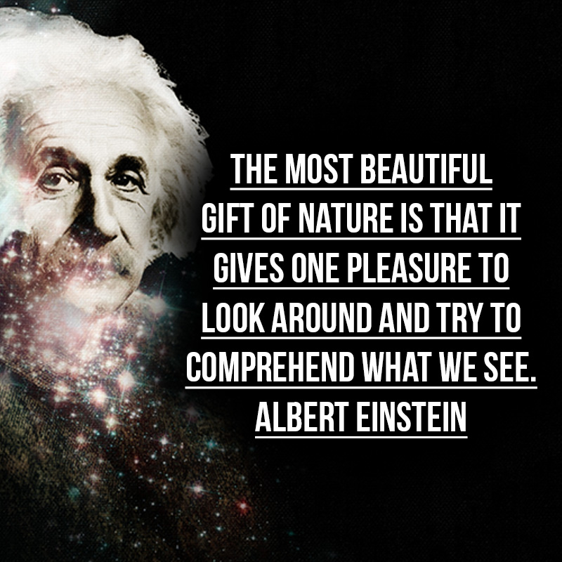"""""""The most beautiful gift of nature is that it gives one pleasure to look around and try to comprehend what we see."""" - Albert Einstein"""