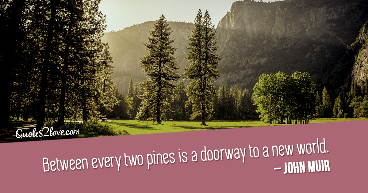 John Muir's quotes - Between every two pines is a doorway to a new world. - John Muir